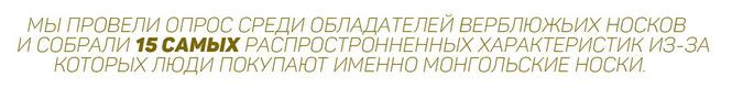 http://mongolia.nethouse.ru/static/img/0000/0004/1851/41851648.e1gruxpdmq.W665.jpg